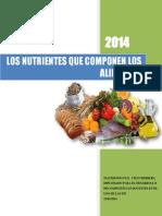 Copia de Nutrientes Que Componen Los Alimentos