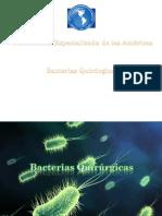 bacterias quirurgicas