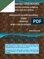 Seguridad e higiene (EPP).pdf