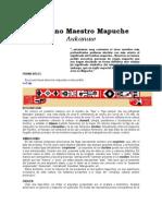 Aukanaw_ La Ciencia Mapuche 3