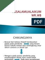 Presentation1 chikungunya