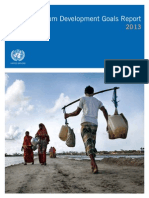 Millenium development Goals Report 2013