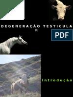DEGENERAÇÃO TESTICULAR