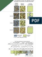 Carbonate Classification