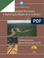 Concessões Florestais e Exploração Madeireira no Brasil