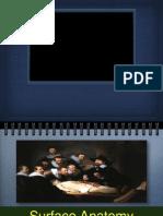 Surface Anatomy 2013 Final Version