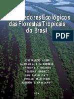 Corredores Ecologicos Das Florestas Tropicais No Brasil