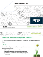 plantas_sebenta