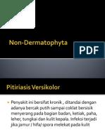 Non Dermatophyta