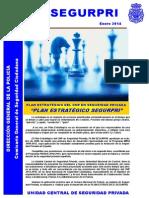 Plan Estrategico SEGURPRI.pdf.pdf