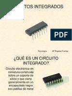 ciircuito integrado fisica 3