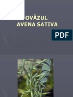 OVĂZUL