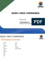 Simple Unix Commands
