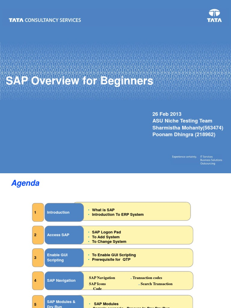SAP Overview for Beginners 1 0 | Enterprise Resource