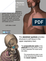 VB Atlas RespiratorySystem Revised