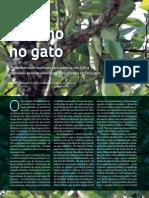 De Olho No Gato | Revista Pesquisa FAPESP 215 | Jan 2014