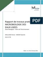 Rapport TP Microbiologie Des Eaux Usees