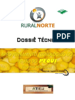 RN-EA 16 - DOSSIÊ TÉCNICO  -  APROVEITAMENTO TECNOLÓGICO DO FRUTO DO PEQUI  -  Apostila 01