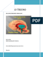 Cerebro Triuno Psi Edu