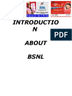 bba 3rd sem project report