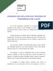 Variables Que Influyen en El Proceso Del Calor - JJ