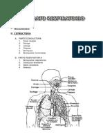 7  Aparato respiratorio
