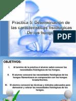 Determinacion de Las Caracteristicas Fisiologicas de Los Hongos