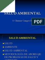 Salud Ambiental 05-10-13