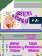 sistema respiratorio.Rosales y Fernández