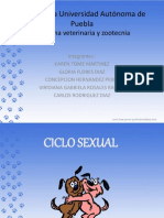 ciclosexual