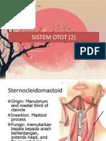 Sistem Otot (2)