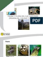 Fauna y Flora Del Eje Cafetero