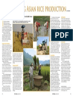 Rice Today Vol. 13, No. 1 Modernizing Asian Rice Production