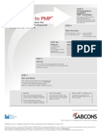 Sabcons Pmp Roadmap
