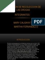 Obtencion de Recoleccion de Las Drogas