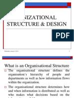 Organizational Structure Design(1)