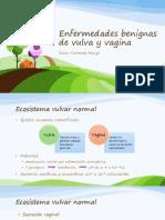 Enfermedades Benignas de Vulva y Vagina