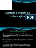 lesionesbenignasdevulvayvagina-121121173607-phpapp01