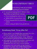VIROLOGI I.PPT