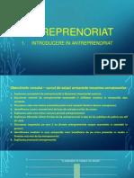 Curs 1 - Introducere in ANTREPRENORIAT - Slides