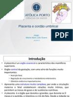 PEMC_3ªaula_Placenta e cordão