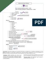 Guía Antibióticos Esquemática.pdf