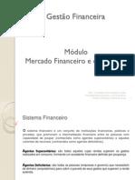 Mercado Financeiro Capitaispdf