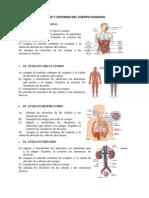 Aparatos y Sistemas Del Cuerpo Humano