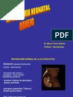 hipoglicemia-conferencia-1206898237668647-3 (1)