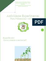 Actividade Experimental Powerpoint