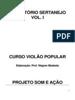Repertorio Sertanejo ONG