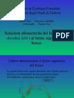 Relazioni allometriche del larice (Larix decidua Mill.) al limite superiore del bosco