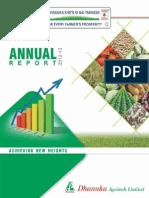 Annual Report Lite