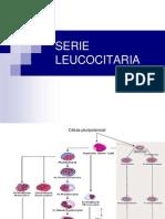 Uiii Leucocitos 2